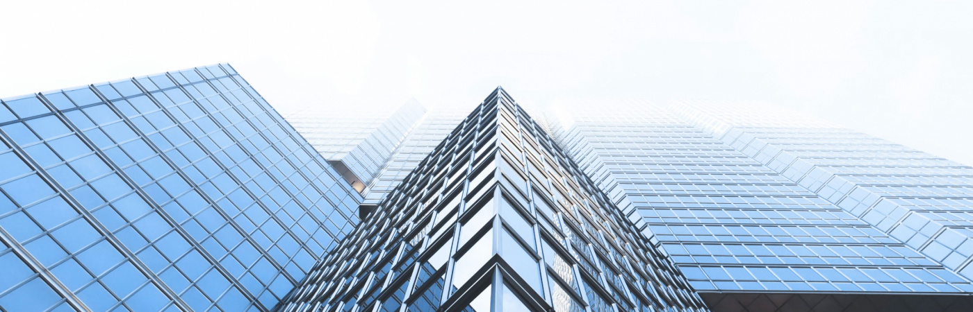 ESG Management in der Praxis